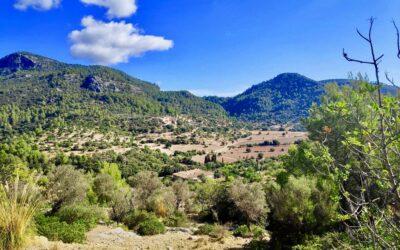 Mallorcas køkken og vandring 15.9. – 22.9. 2021